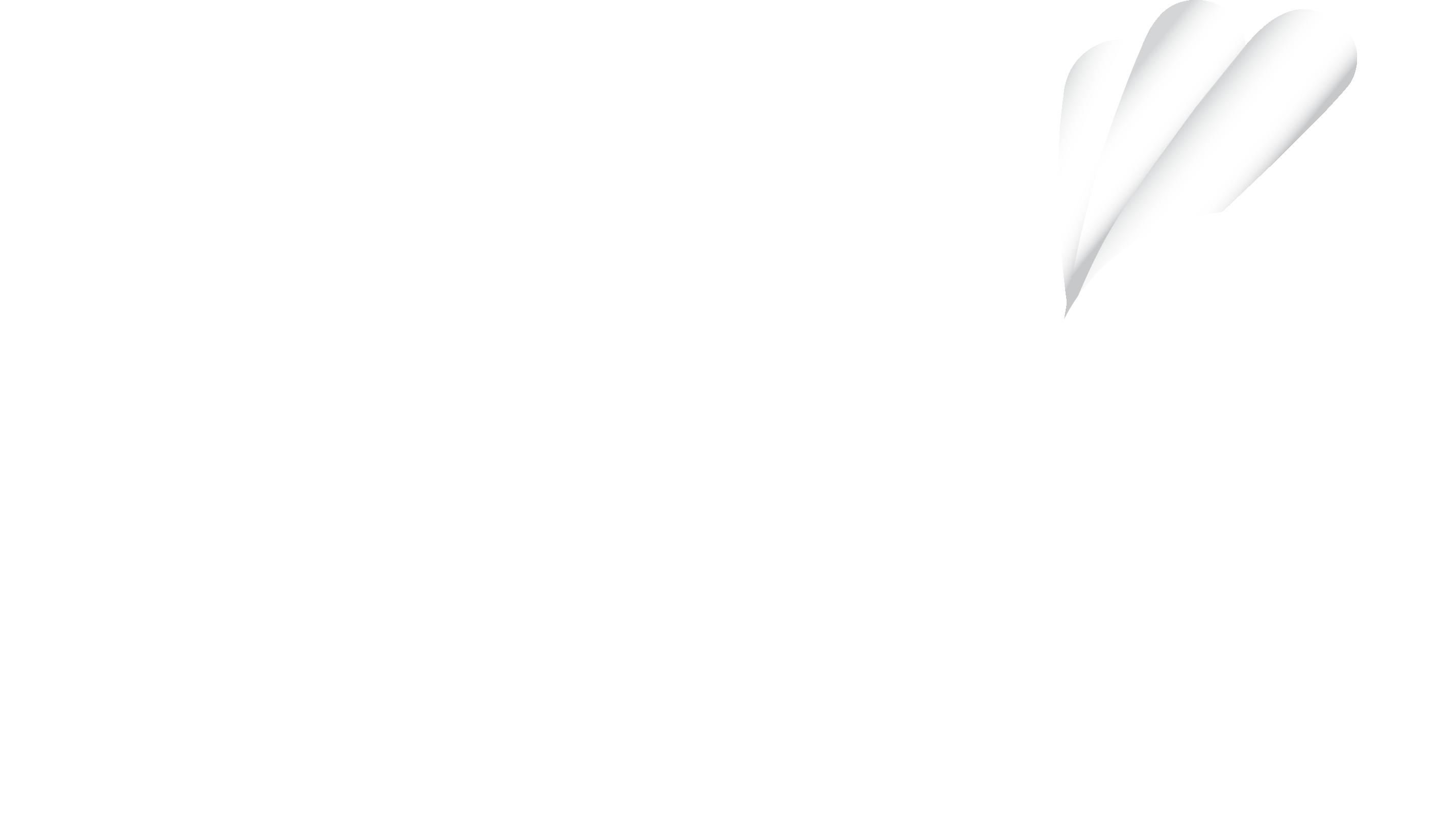 ALLG Logo_WhiteFLat